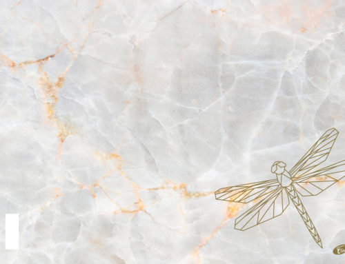 Marble – Dragonfly